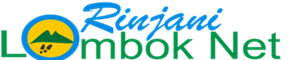 Rinjani Lombok Net Logo
